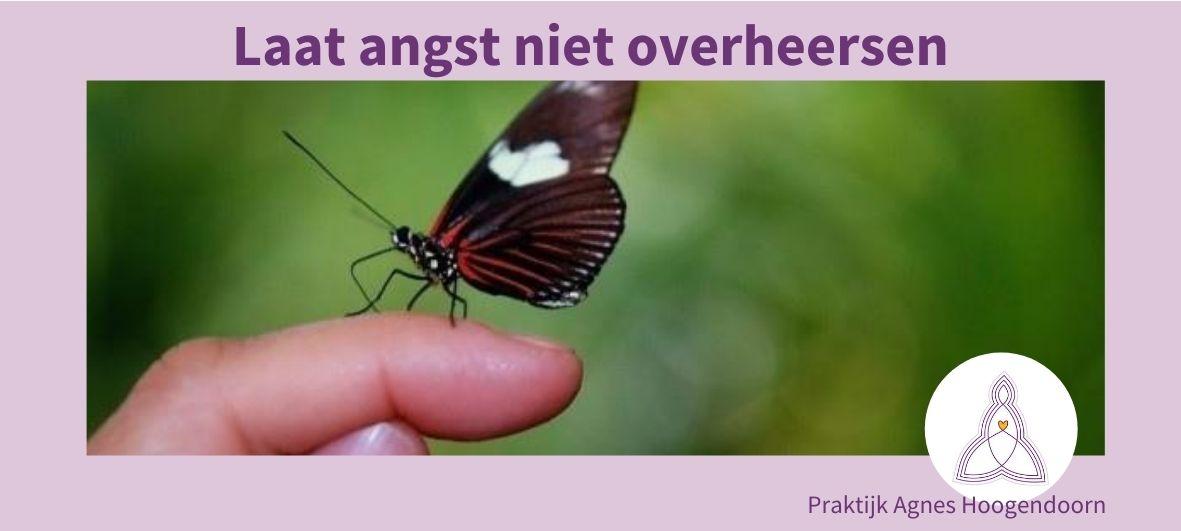 Agnes Hoogendoorn-angst