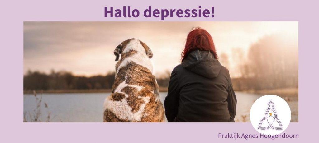 Agnes Hoogendoorn-depressie