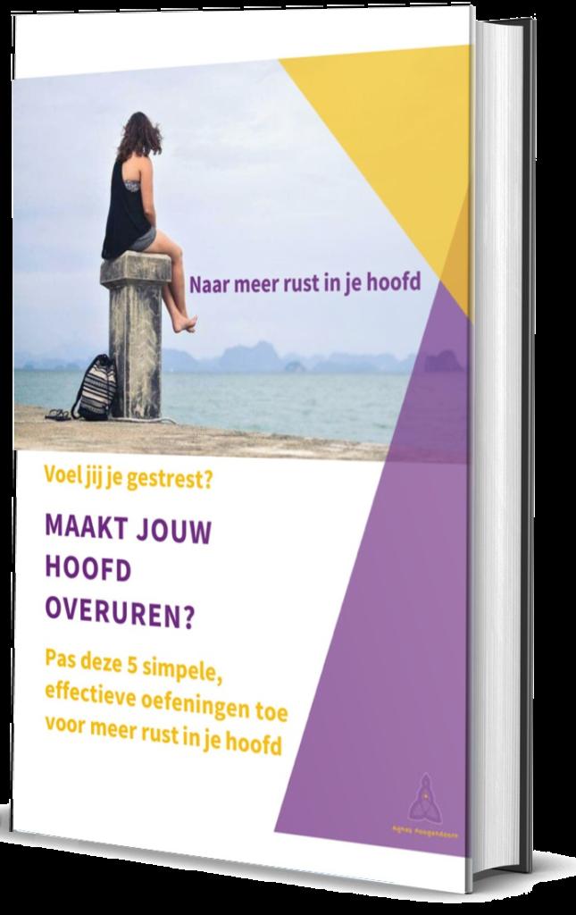 e-boek Naar meer rust in je hoofd, Agnes Hoogendoorn